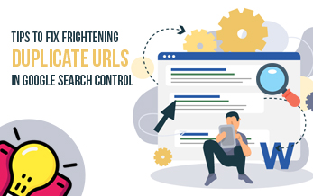 Tips to Fix Frightening Duplicate URLs in Google Search Control
